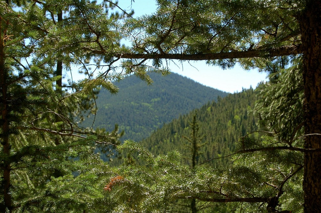 Colorado's Finest Hiking Spots: Golden Gate Canyon State Park