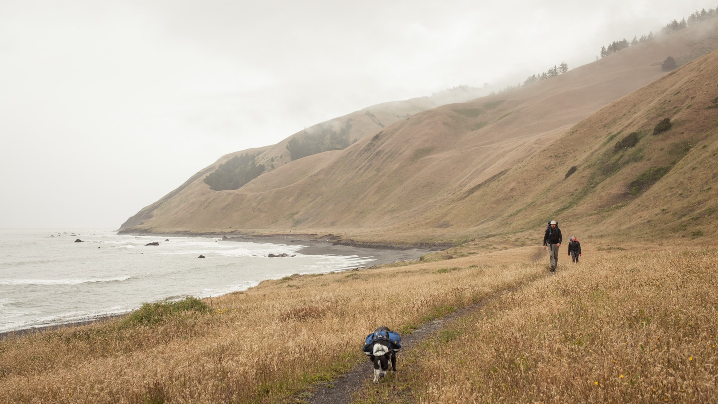 People hiking the Lost Coast Trail