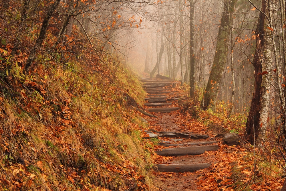 Get to Know More About the Appalachian Trail