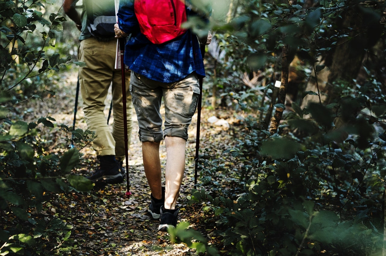 two person walking on the pathway between plants wearing the best hiking shoes