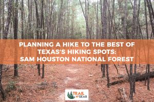 Planning a Hike to the Best of Texas's Hiking Spots: Sam Houston National Forest