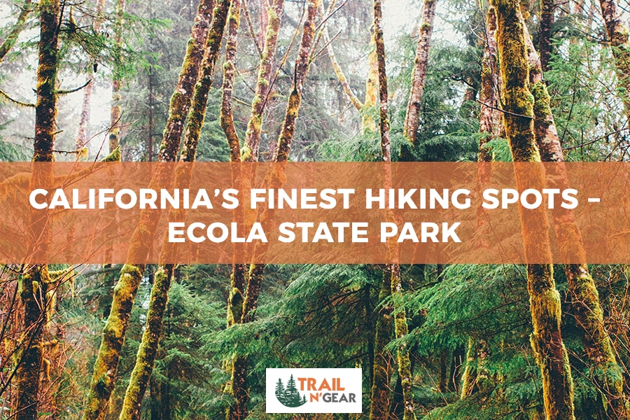 California's Finest Hiking Spots – Ecola State Park