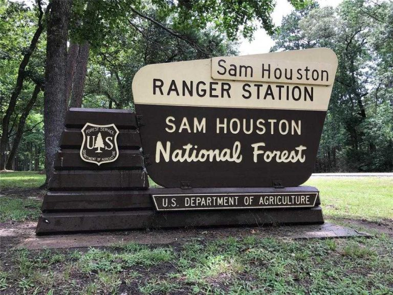sam houston national forest - Sam Houston National Forest