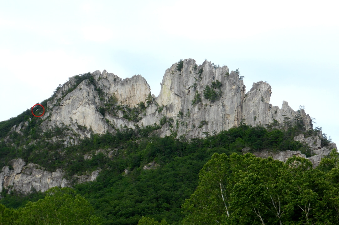 Seneca rocks with trees and other vegetation