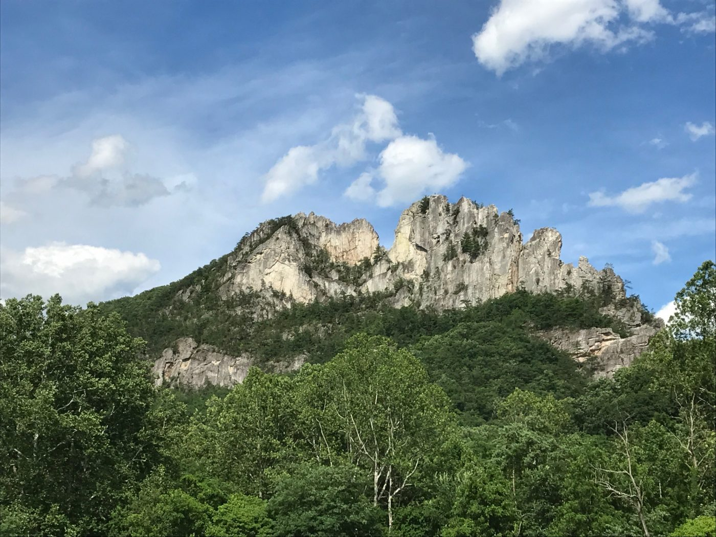 Seneca Rocks with a lot of trees and vegetation