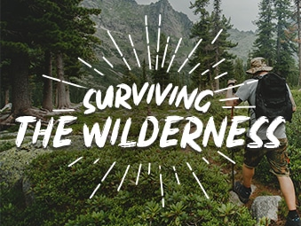 Surviving the Wilderness like a Survivalist